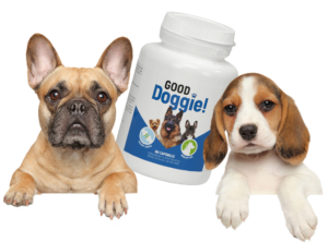 Good Doggie - como tomar - funciona - ingredientes